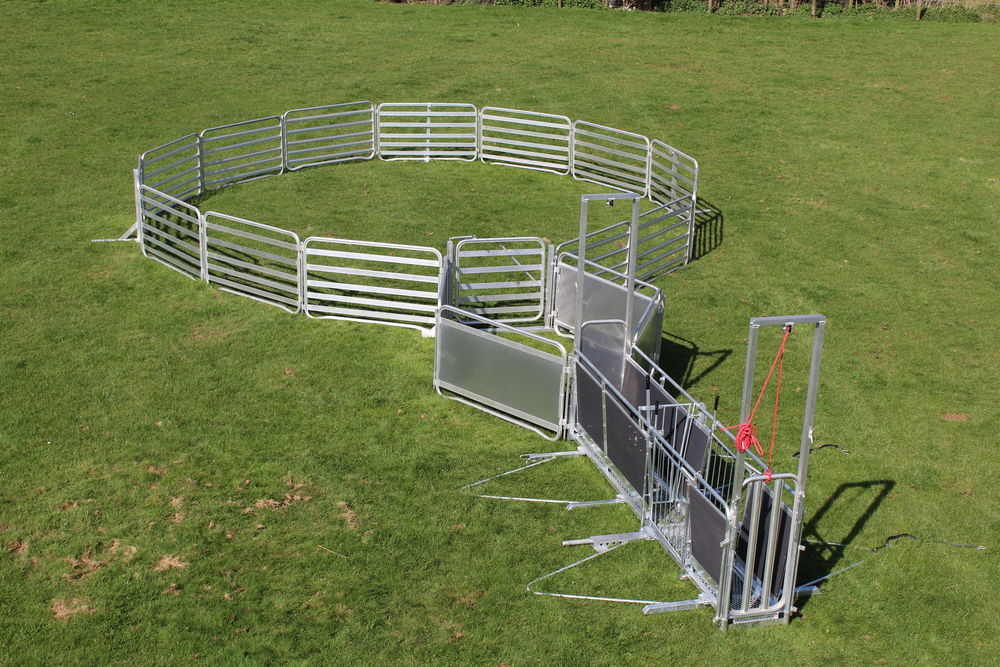 Alligator Sheep Handling System Sadler Country Life